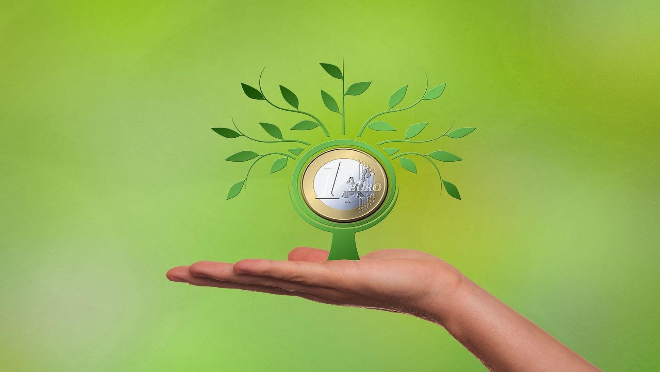 Interne Zinssatzmethode - Investitionsrechnung mit maximaler Rendite
