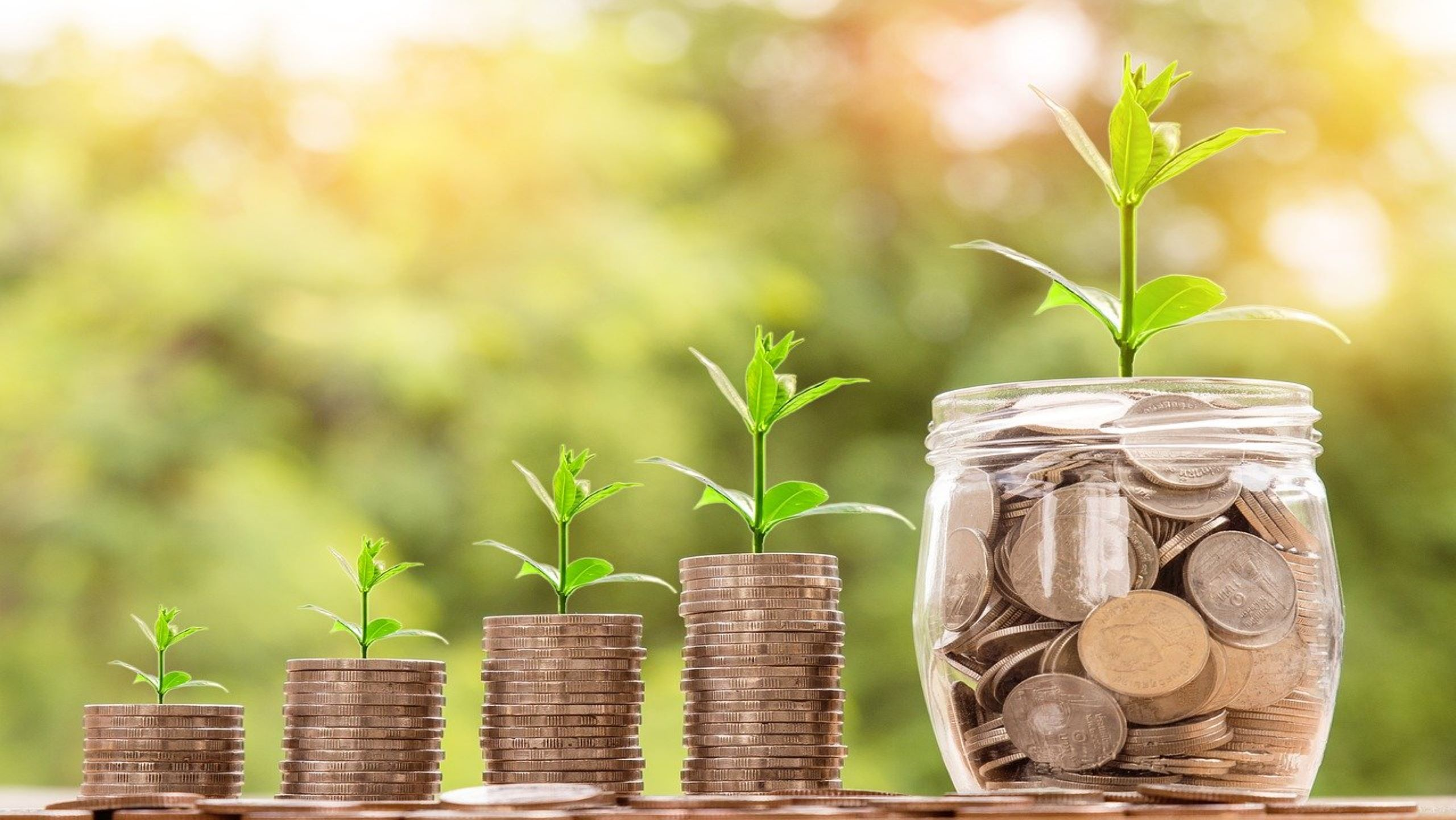Investionsrechnung- Ein Überblick
