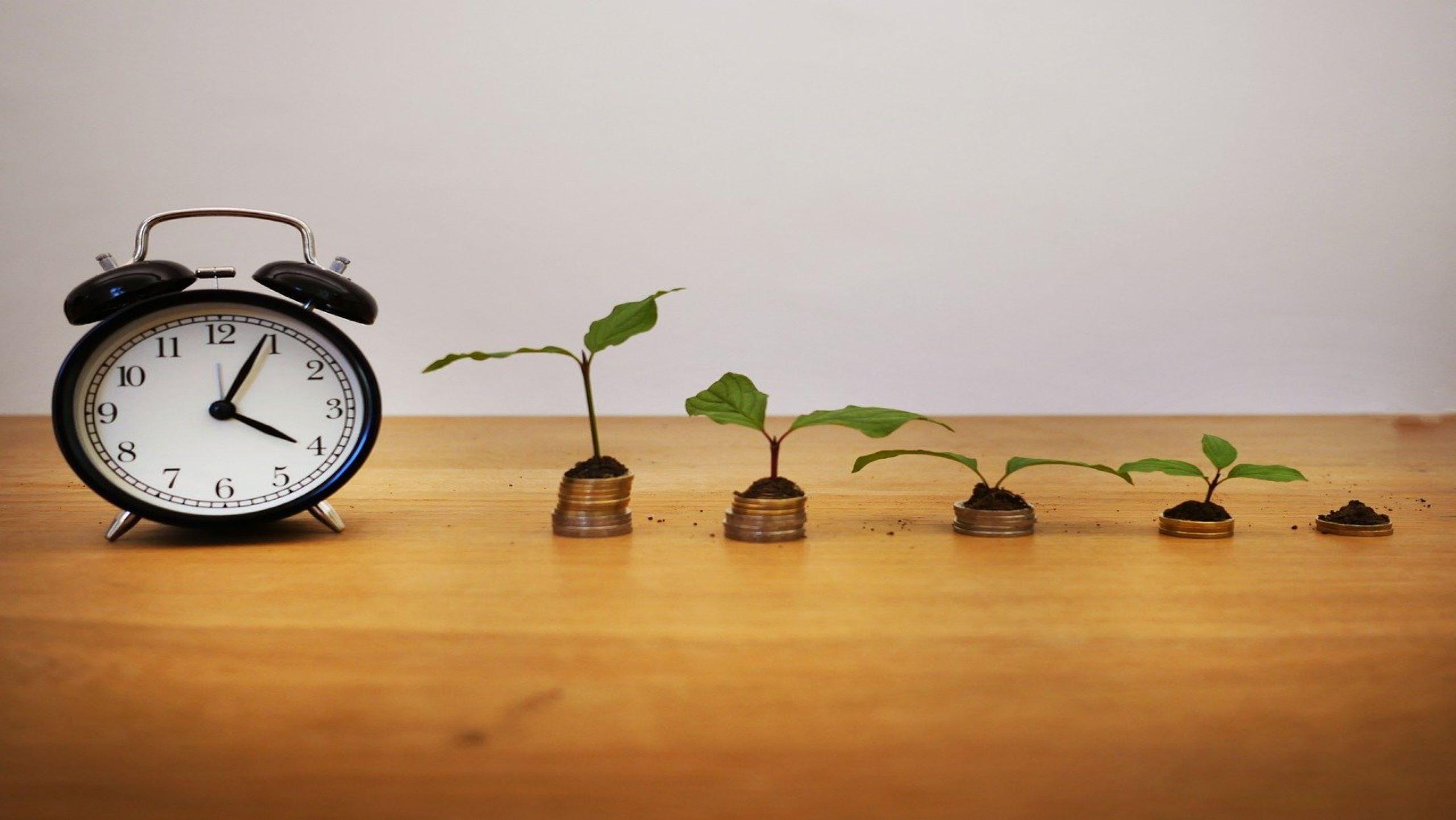 Kapitalwertmethode - Investitionen mit Zinseinfluss kalkulieren